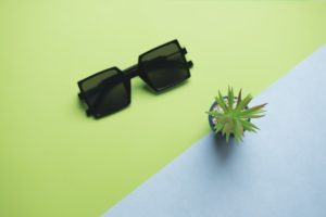 shades and plant